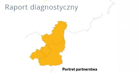 Raport diagnostyczny